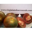 TOMAKU tomaat zaden - Solanum lycopersicum